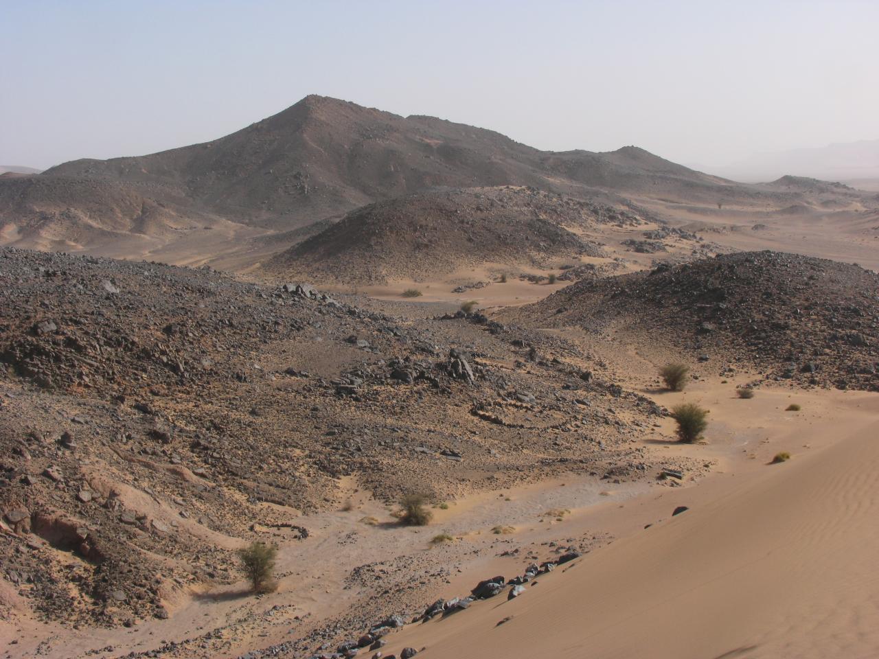 Fossiles Serdghar