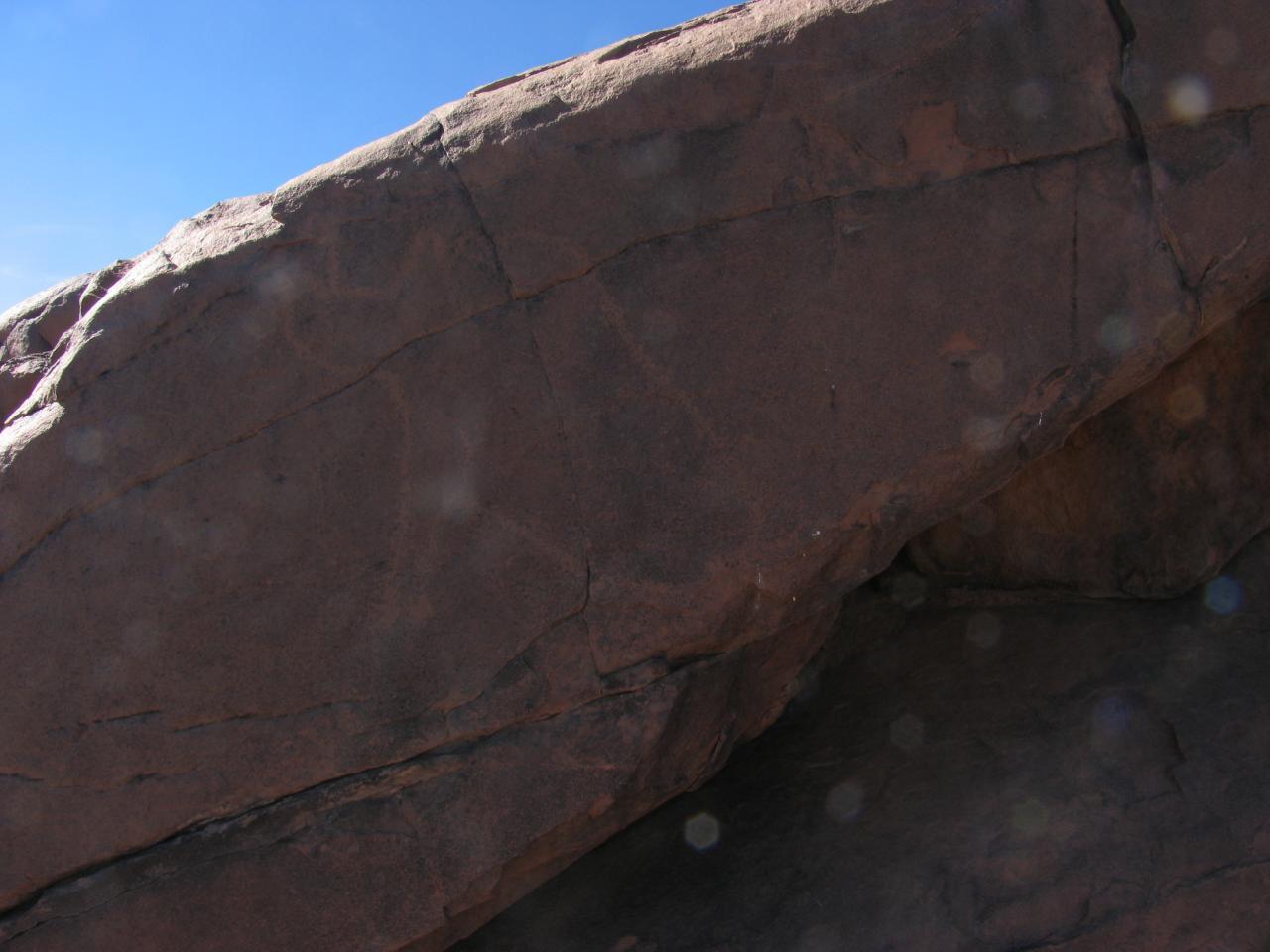 Gravure rupestre (rhinocéros)