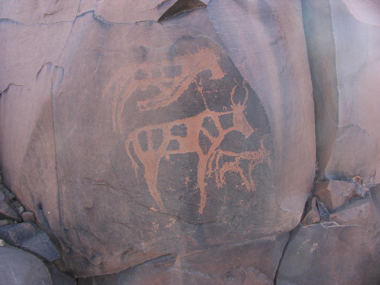 Gravures rupestres Akka NO
