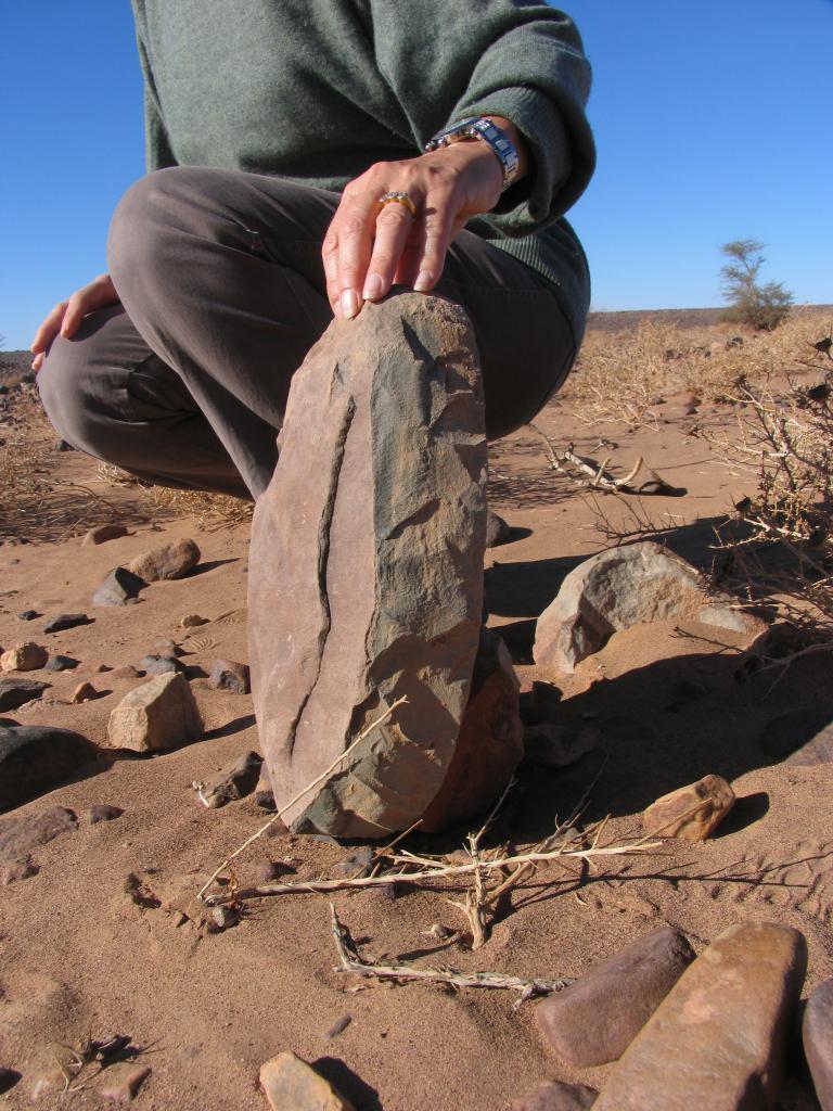 Outil paléolithique 03