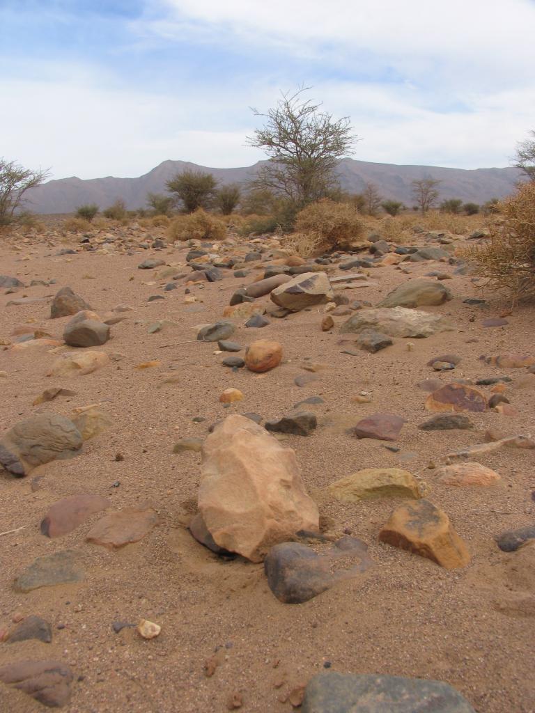 Outil paléolithique 06