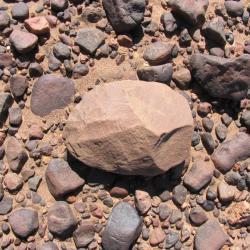 Outil paléolithique 15