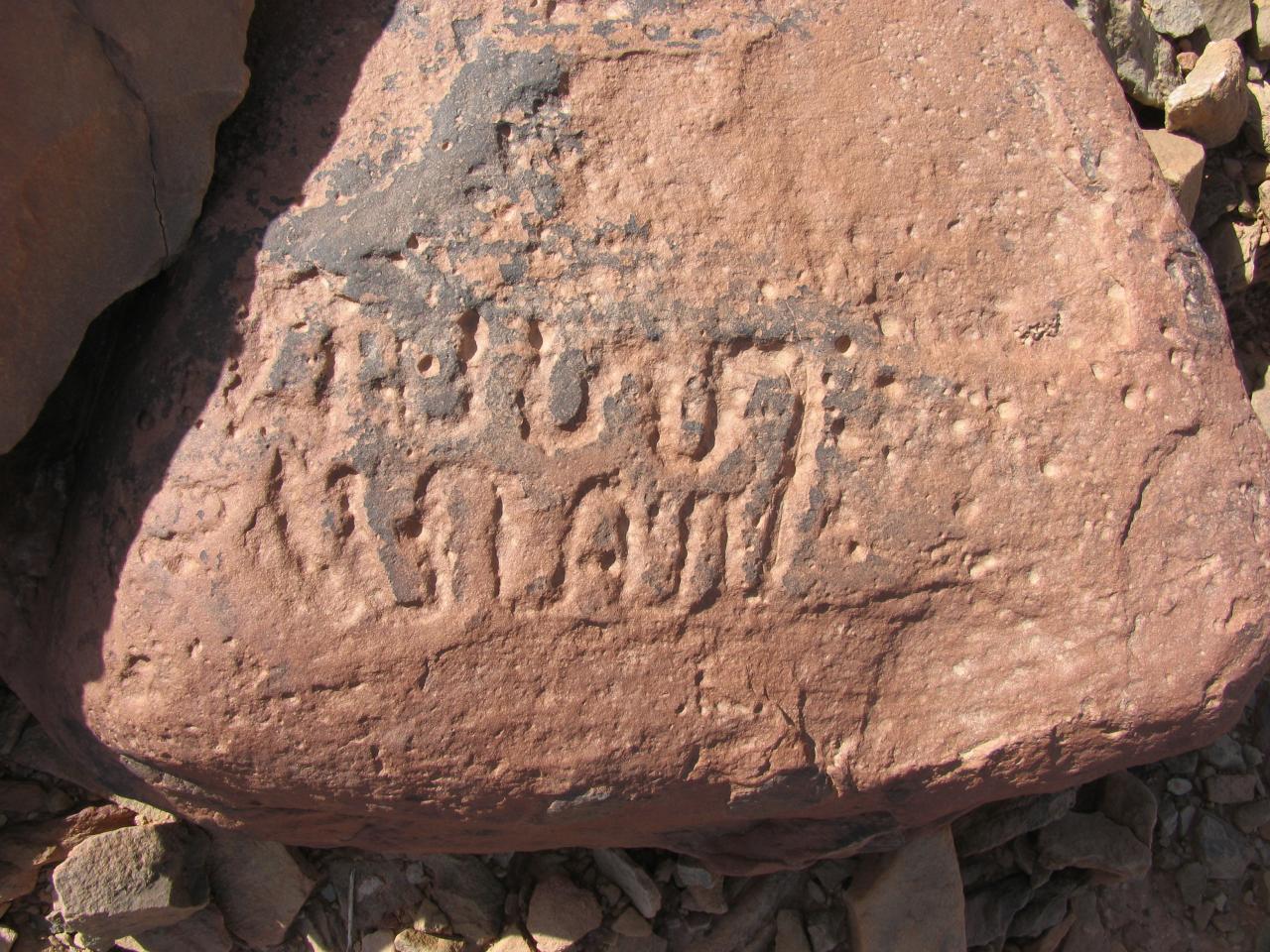 Gravures rupestres NE Icht