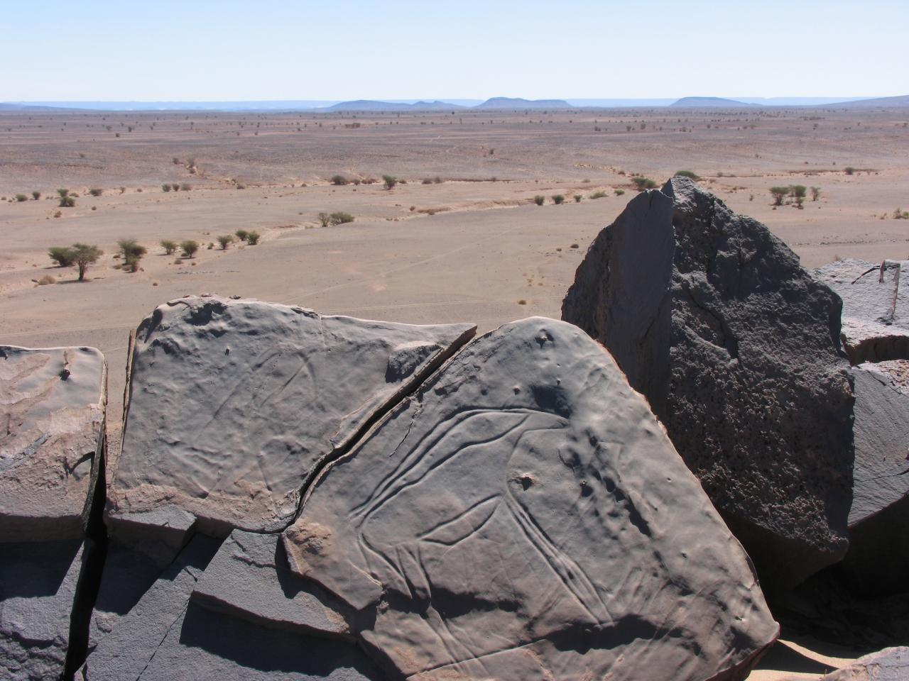 Antilope et vue sur le site